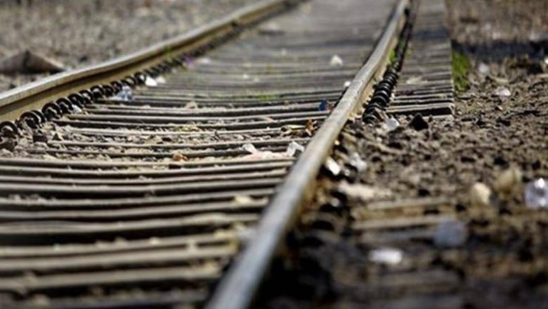 Over 27,000 cattle deaths on tracks in Covid year